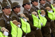 """【国際】かわいすぎる…チリの記念パレードで""""警察犬のたまご""""が大行進"""