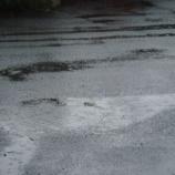 『む、雨だ・・・・』の画像