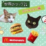 『【世界のマック!?】を食べてみよう!【タジキスタン編】』の画像