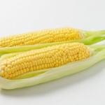 【悲報】外食チェーン店の7割「ライスをトウモロコシに変更する可能性は大いにある」