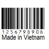 『将来性あるベトナムで働く求人』の画像