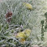 『白霜の音』の画像