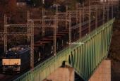『2020/11/17運転 宇都宮貨物ターミナル駅常備ホキ800型9両廃車配給』の画像