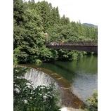 『【合宿】大源太&マスのつかみ取り』の画像
