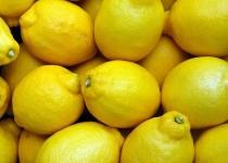 面接官わい「唐揚げにレモンはかけますか?」