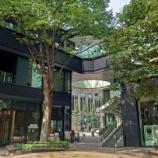 『【写真】 東京丸の内仲通り Xperia5-1』の画像