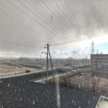 『うひょー雪だー!!浜松各地で15時頃に初雪を観測!今日(1/26)は太平洋側でも雪の予報がでており夜間の路面凍結に注意!』の画像
