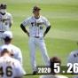 果たして阪神は本当に守備が悪いのか、数値から見ていく野球論