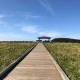 『【北海道ひとり旅】オホーツクドライブ 根室市『北方原生花園』』の画像