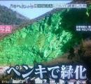 「美しい中国」、2035年にほぼ実現  国土大規模緑化行動を実施