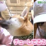 『【乃木坂46】山下美月『チューしてるみたい・・・』』の画像