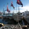 赤羽根港のお正月