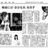 『梅雨には「余分な水」を出す|産経新聞連載「薬膳のススメ」(3)』の画像
