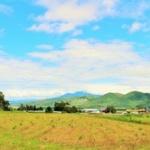 北海道の田舎住みだけどどう思う?