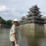 『松本城とドンキホーテ』の画像