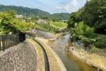 夏休みの自由研究!天野川のいちばん下流からいちばん上流まで探検してみた!【交野市内上流域編】