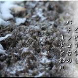 『柳の下の泥鰌』の画像