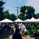 『Go Green Market 2016』の画像