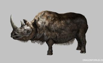 Rhinos of Skyrim