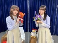 【乃木坂46】アスカとマリ、どっち派...? ※画像あり