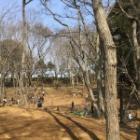 『アンデルセン公園に行ってきました。』の画像