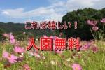 無料だす!私市植物園!~11/14(土)と11/15(日)の2日限定~