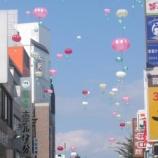 『『小田原 風船菊祭り』』の画像