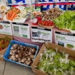 「福島県産の食べ物の購入ためらう」15.7パーセント…消費者庁、福島第一原発事故の消費者への影響を調査