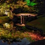『東京の紅葉ライトアップ』の画像