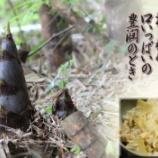 『筍ご飯』の画像