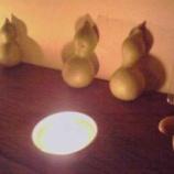 『シバケンイベント「瓢箪ランプとあまいもの」開催中!』の画像