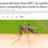 『天然の虫よけにココナッツオイル成分』の画像
