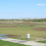 『前日の雨で一部グラウンドには水たまりも』の画像