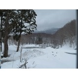 『今朝の月山(4/9)雪積もりました!パウダー楽しめそうです。』の画像