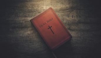 新約聖書「イヌは天国行けないやで」