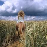 『畑にパンツを埋める農家の人たち』の画像