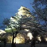 『会津の桜、満開です。』の画像