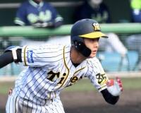【阪神】小幡、投手への声かけで内野引っ張る意識!競争激化の遊撃定位置狙う!!