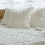 『色々試したけどストロー枕に変えたら人生が変わった』の画像