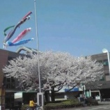 『うどんのまち・加須市』の画像