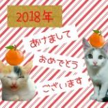 『【2018年】あけましておめでとうございます!』の画像