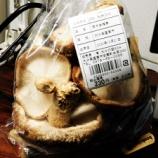 『国東の食環境(306)生シイタケ』の画像