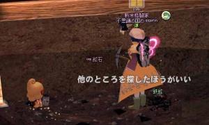 ×幼虫 ○妖精の村イベントのメルティ!