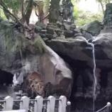 『いつか行きたい日本の名所 城戸ノ滝不動堂』の画像