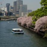 『桜のある大阪の風景』の画像