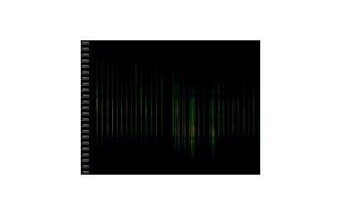 『鋭い声』の画像