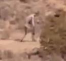 【画像】砂漠でチュパカブラの撮影に成功?