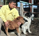【画像有】小さな子馬、愛くるしい!! 佐久の牧場「そらまめ」人気