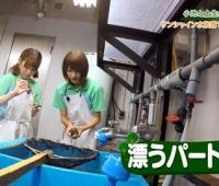 【欅坂46】土生ちゃんみいちゃんから漂うパート感wwwww【欅って、書けない?】