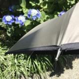 『リーベンさんの日傘』の画像